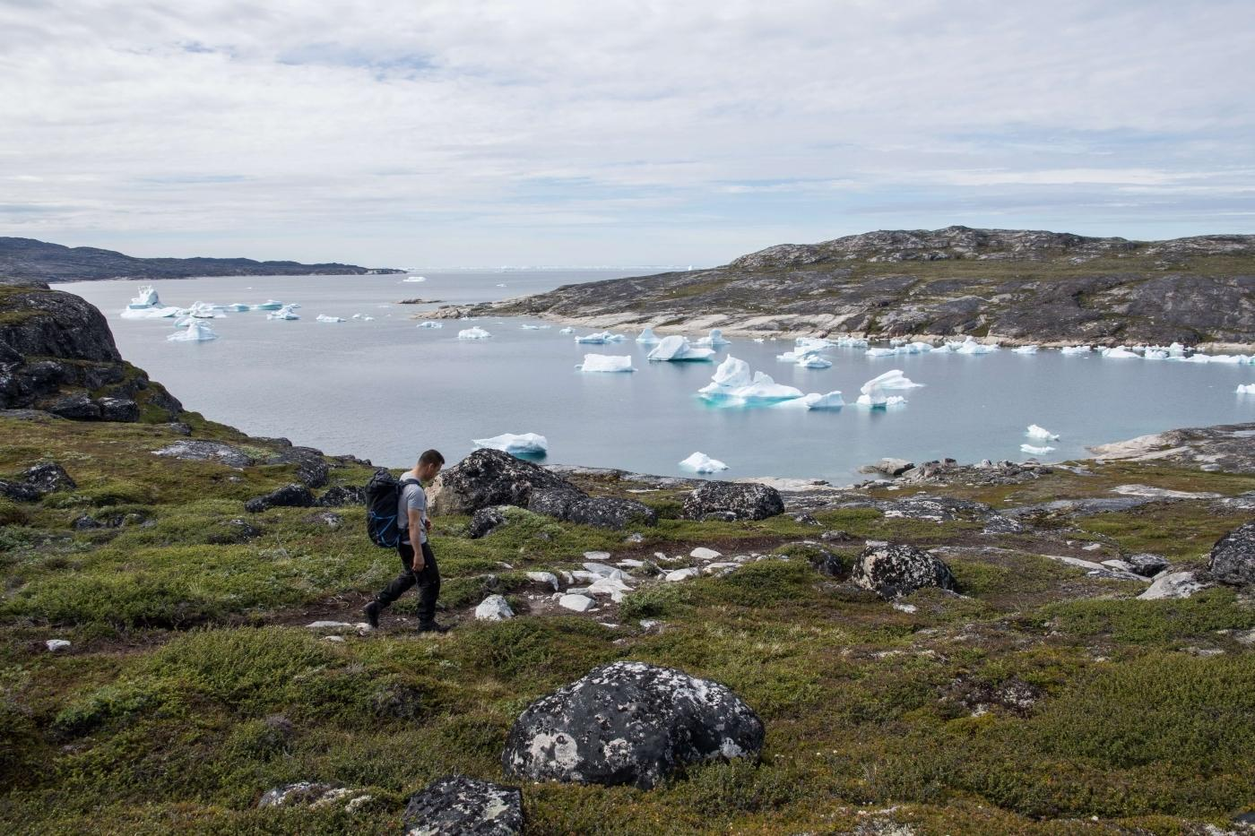 Hiking in Greenland in summer with green landscaping and icebergs. Photo by Guide to Greenland