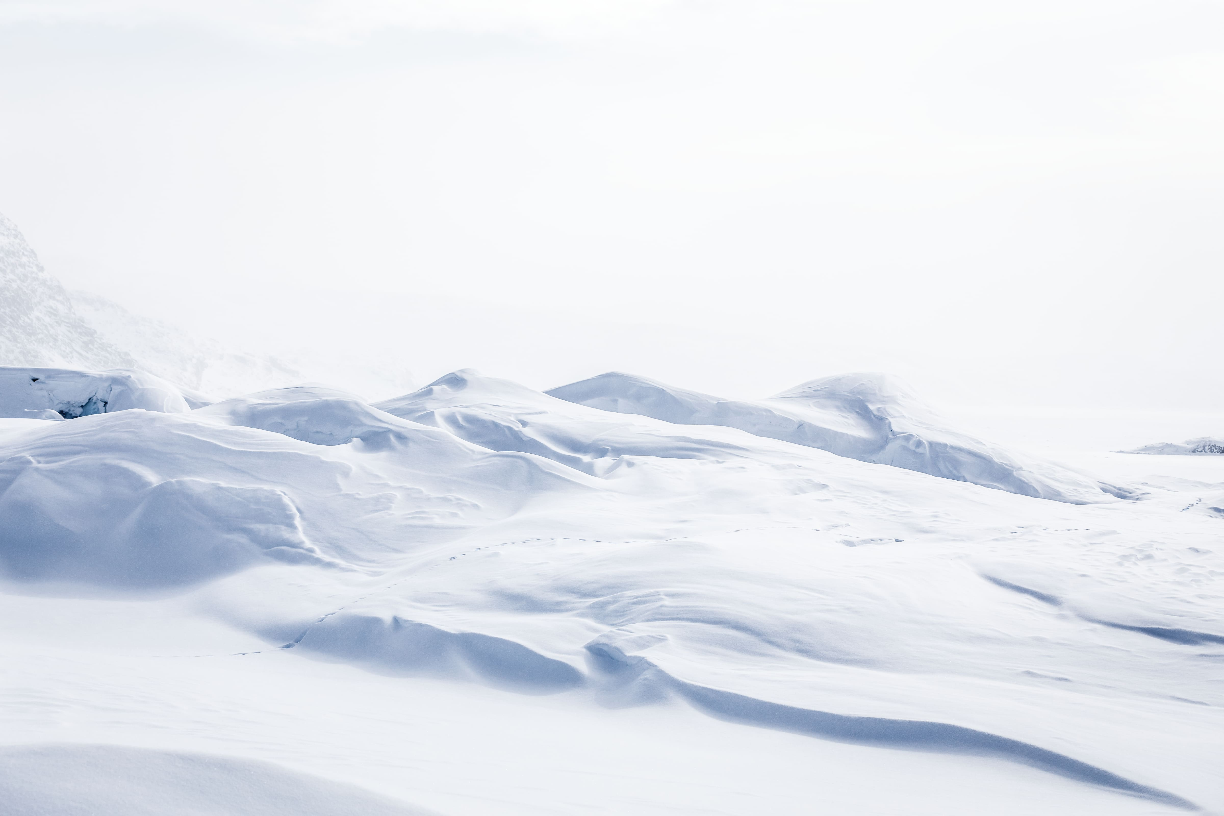 Snowy Whiteout. By Samuel Letecheur