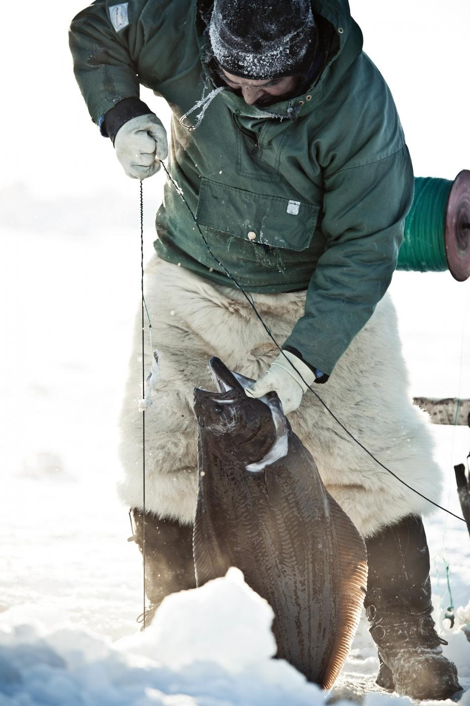 Fishing for halibut near Ilulissat in Greenland. Photo by André Schoenherr - Visit Greenland
