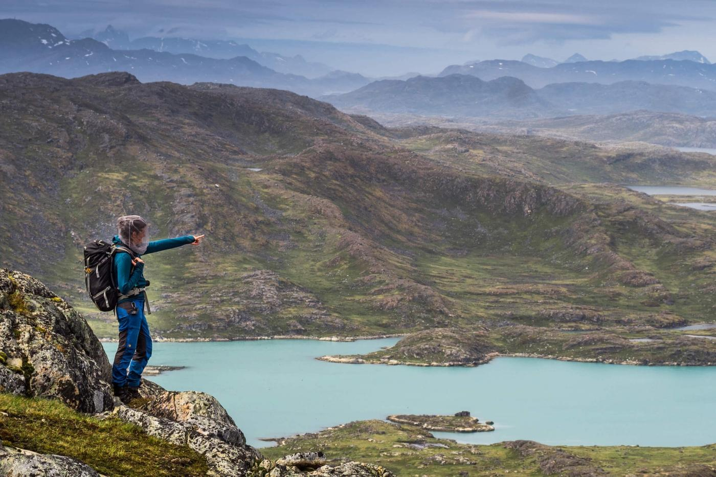 Beautiful view over green mountains and turquoise waters in South Greenland.