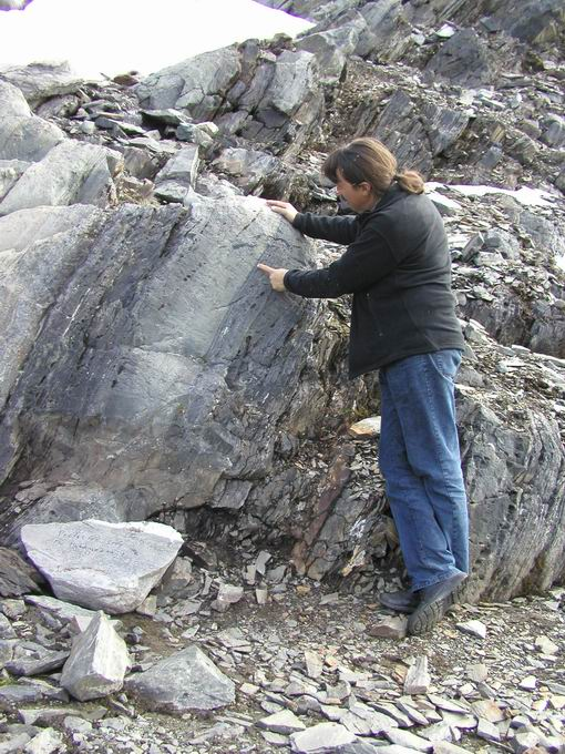 Minik Rosing is pointing the oldest life on earth. Photo by Minik Rosing.