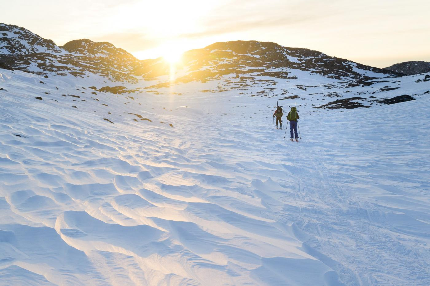 Randonee hunting. Photo by Ilulissat Adventure