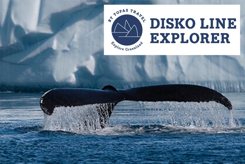 Disko Line: Whale Safari