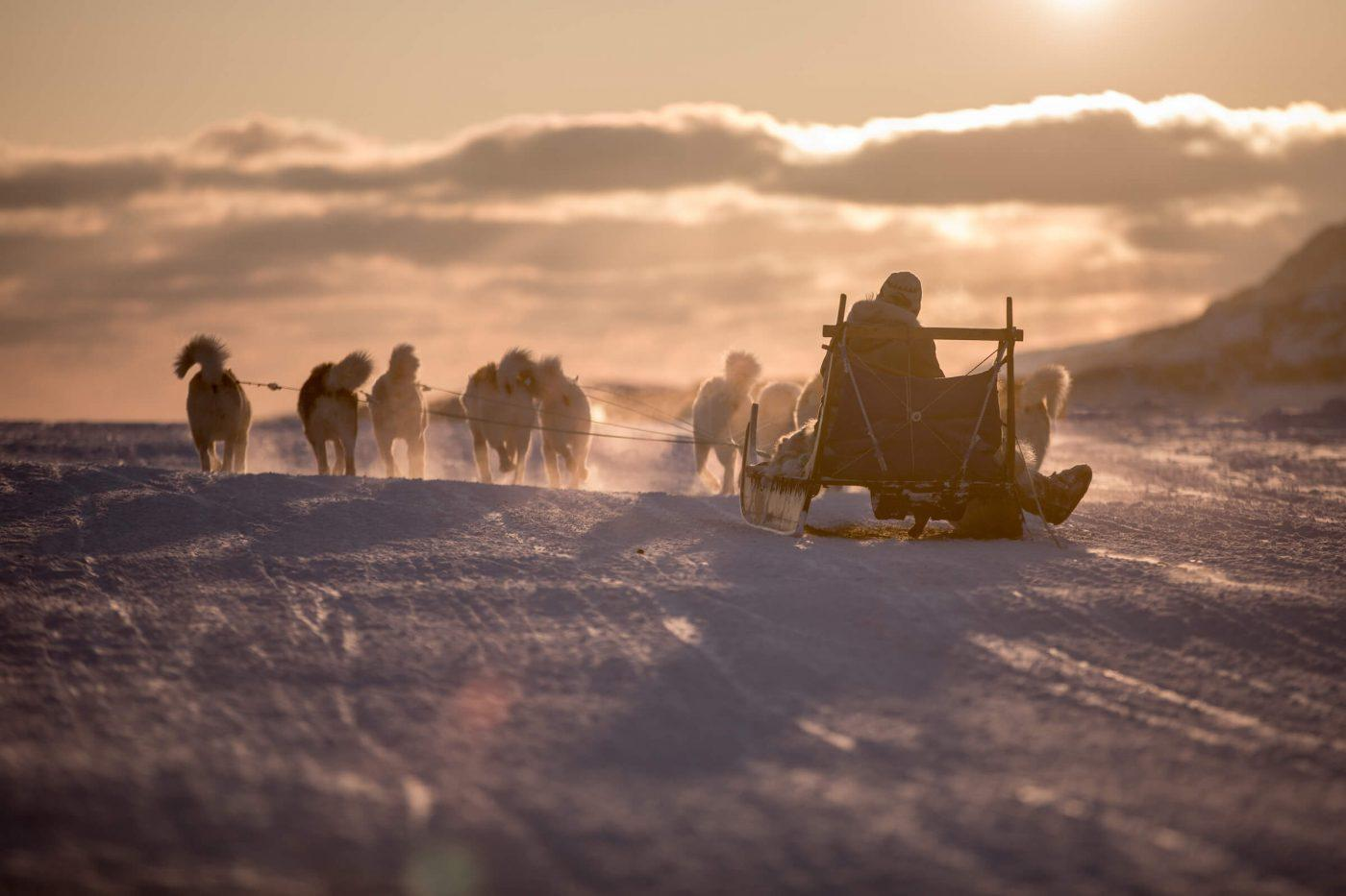A dog sled heading into the sunset near Sisimiut in Greenland. By Mads Pihl