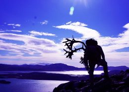 Purple landscape with a silhouette of a man carrying reindeer antlers on his back. Photo by Bowhunting Greenland, Visit Greenland.