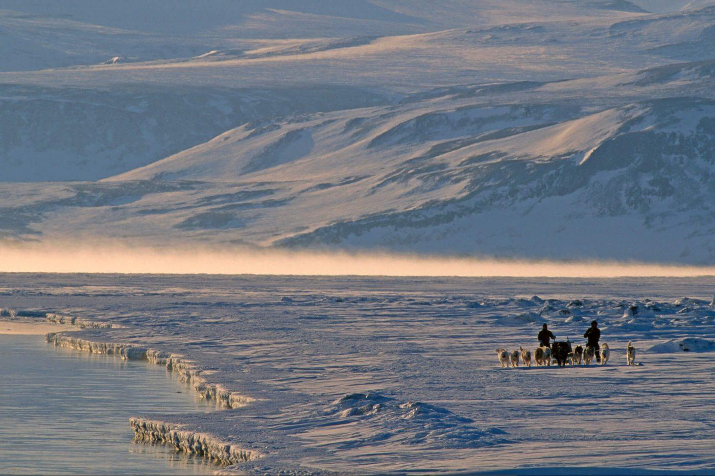 Dog sledding in the north east of Greenland. Photo by Magnus Elander