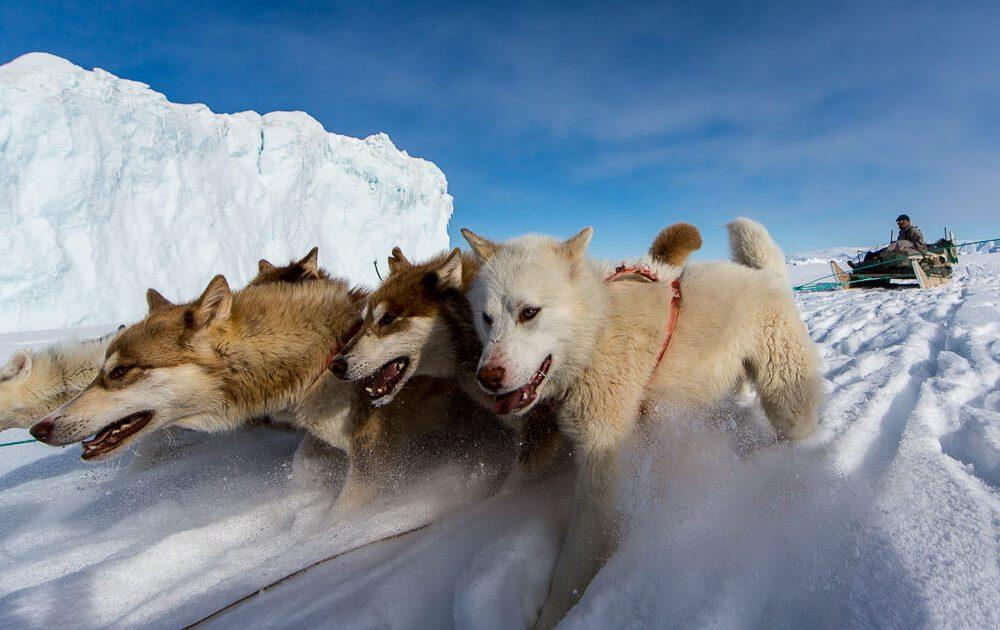 To Thule - The End of The World. Photo by Davor Rostuhar 08