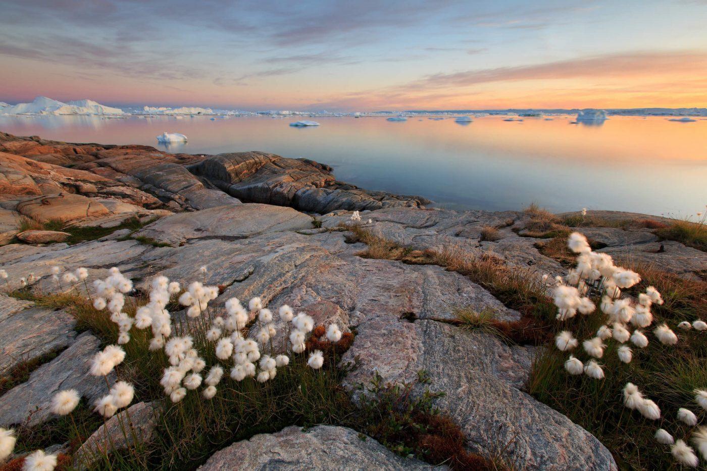 Beach cliffs in Ilulissat. By Iurie Belegurschi