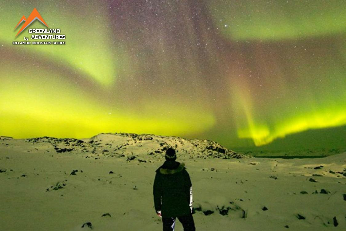 Icelandic Mountain guides: Ice, Dogs & Northern lights