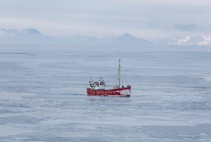 Ilulissat Tourist Nature 05