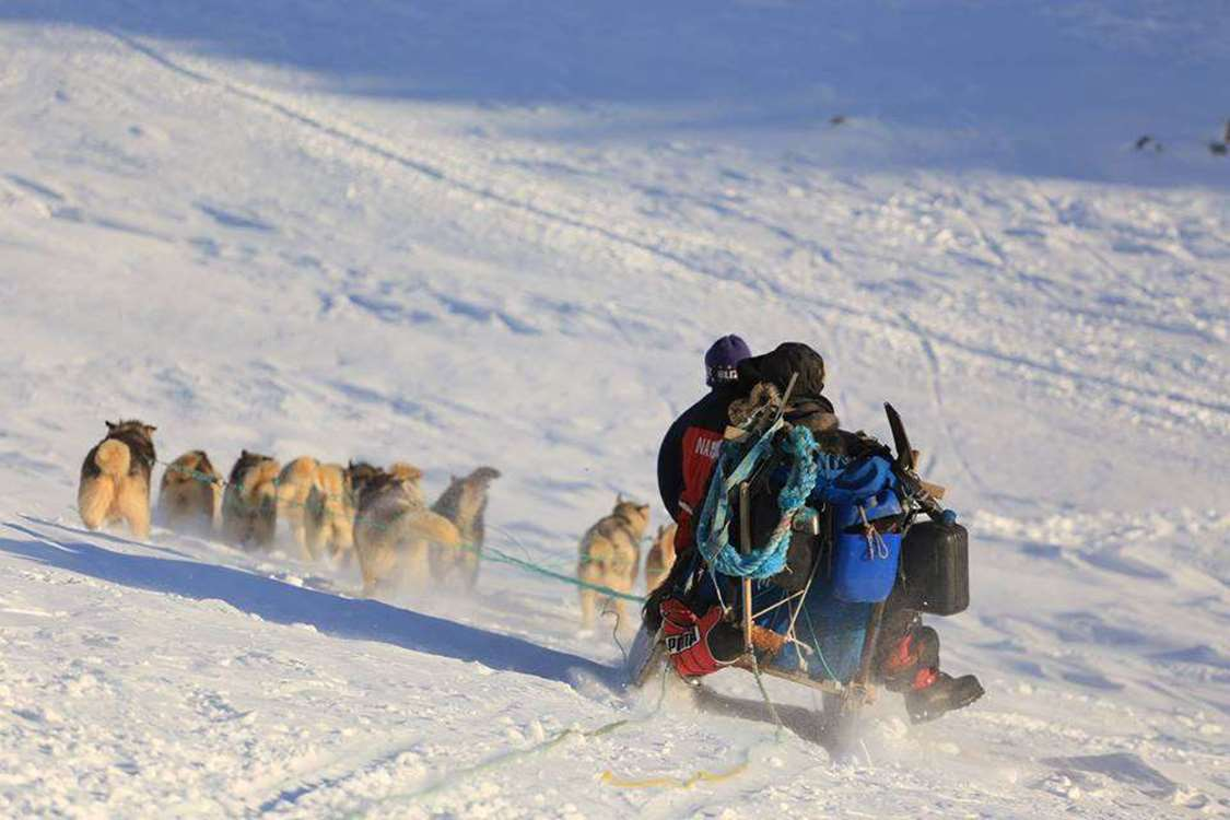 Dogsledding in Ittoqqortoormiit area in East Greenland. Photo by Nanu Travel