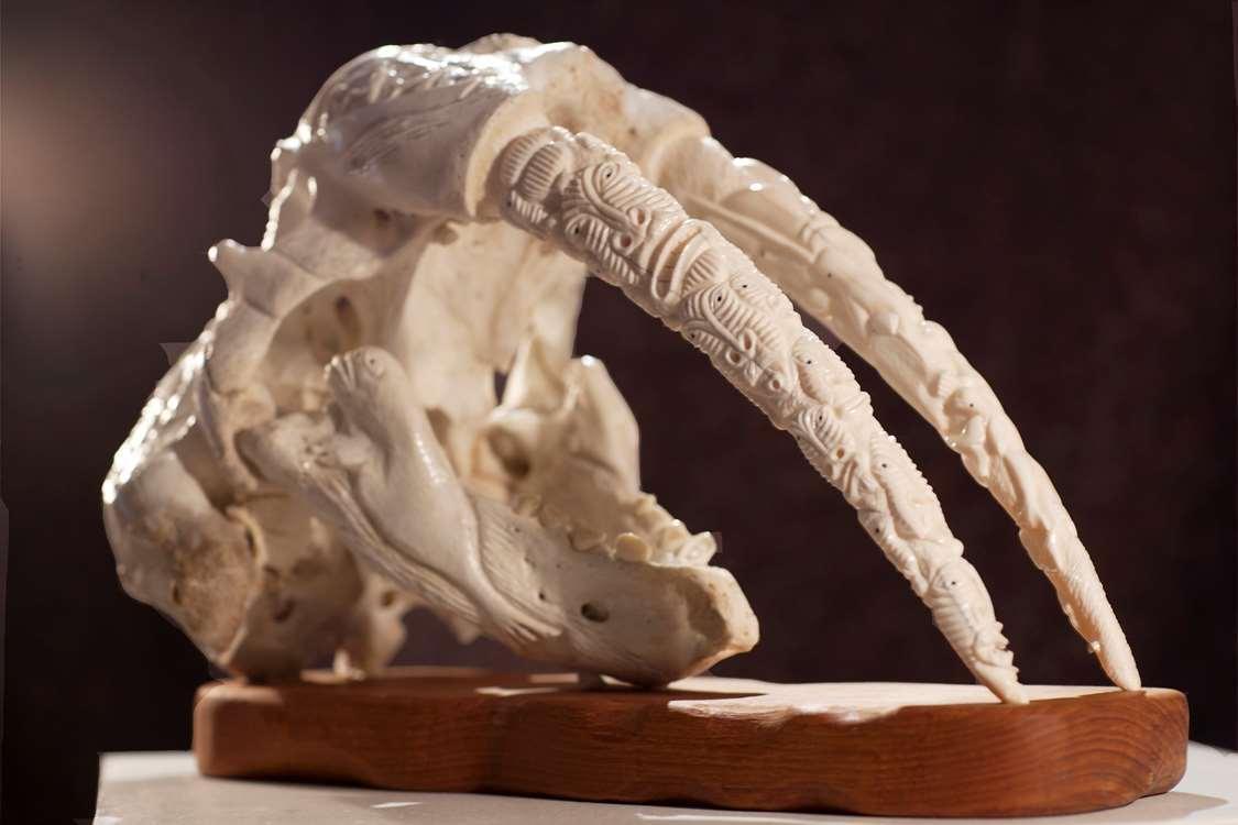 Walrus scull art in Nuuk Art Museum. Photo by Rebecca Gustafsson