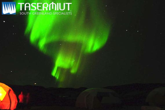 Tasermiut Expeditions: Greenland Northern Lights