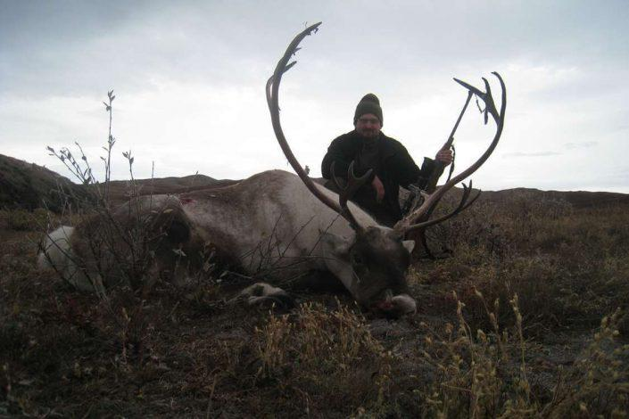 Trophy Hunting Greenland 01